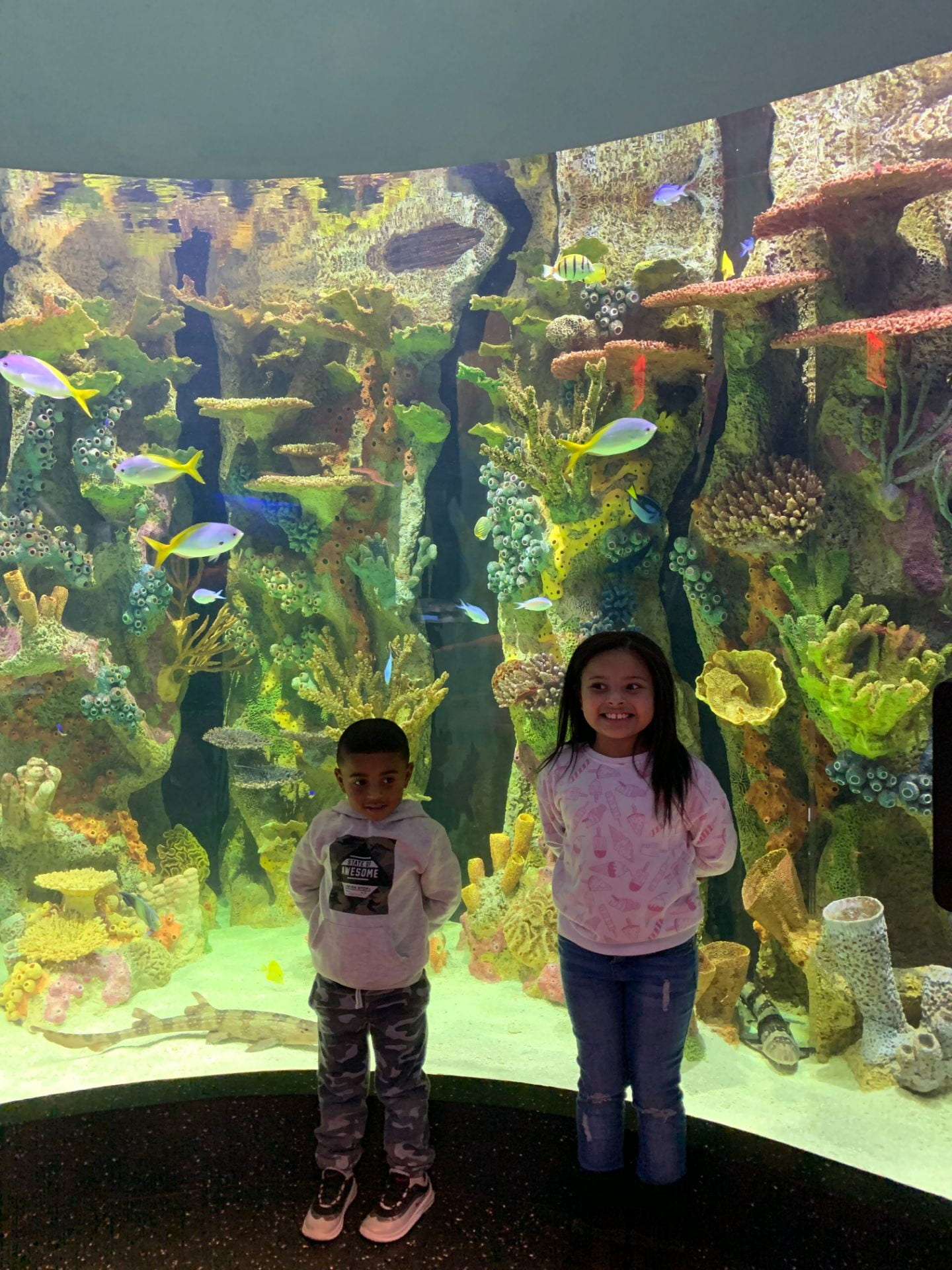 children standing in front of a fish tank